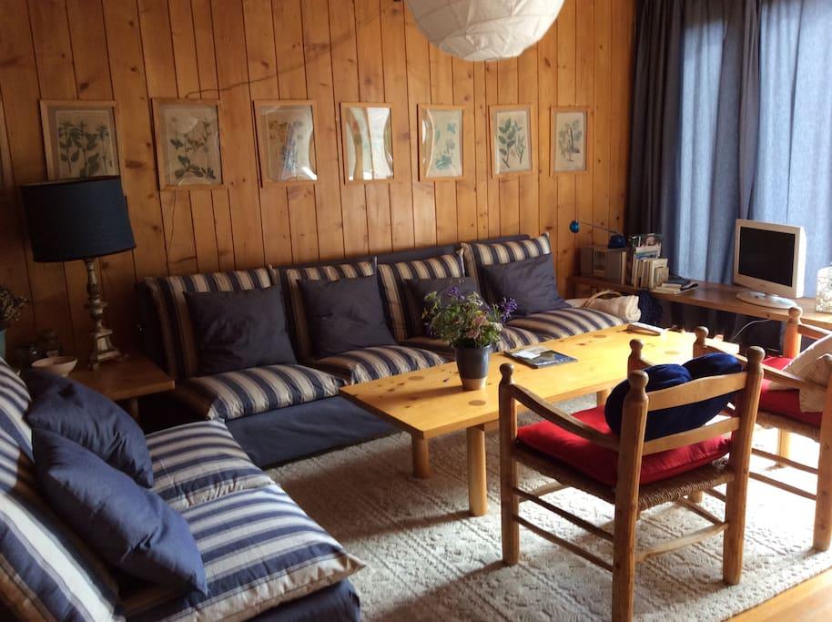 Il salotto con due divani