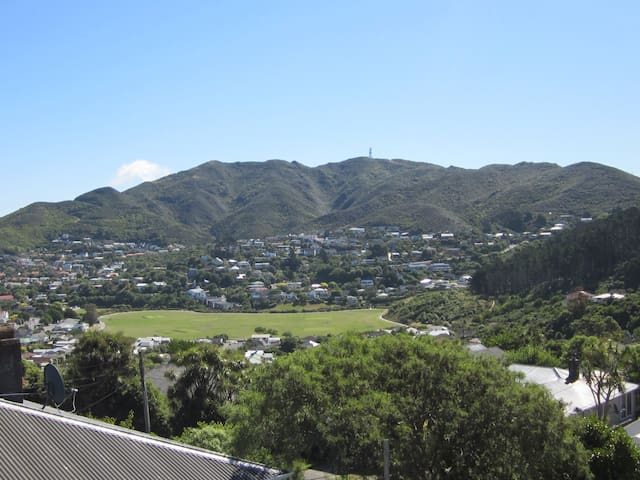 Attractive accommodation with views of Karori.