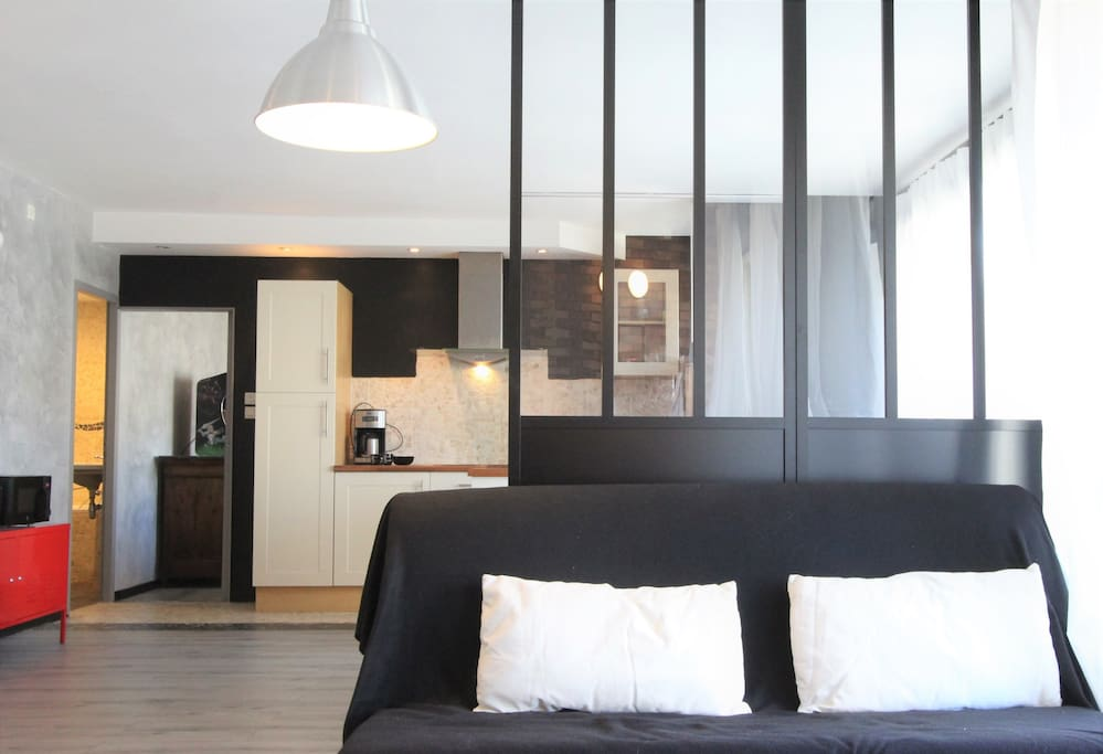 grand t2 style industriel tram a 50m appartements louer grenoble rh ne alpes france. Black Bedroom Furniture Sets. Home Design Ideas