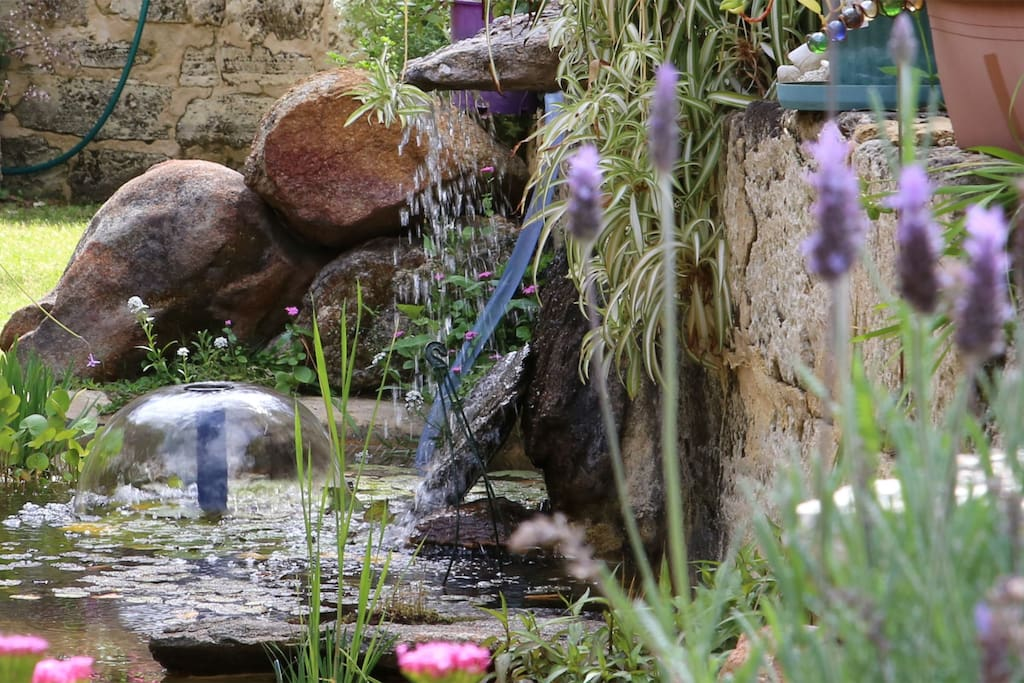 Waterlilies, Fish and tinkling waterfall provide a tranquil break after a busy day...