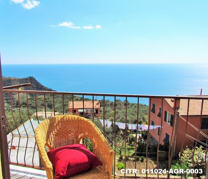 CREUZA DE 5 TERRE...apartment with sea view
