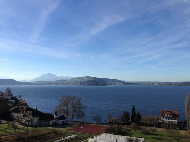 Furnished room in lakeview apartm. - Zug - Apartment