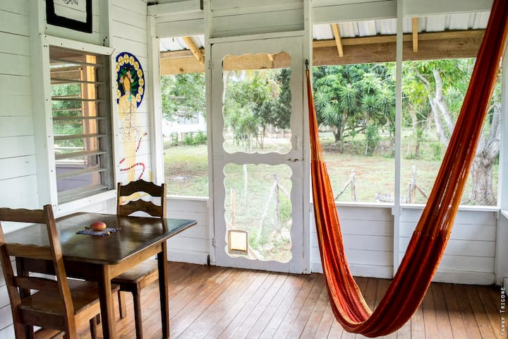 Dorm bed#3, wooden house in a tropical horse farm