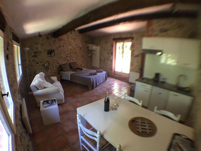 Chic stone hideaway for two. WiFi. - Laroque-des-Albères - Haus