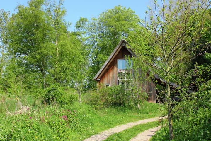 Traumhaftes Ferienhaus in Bergen (Nordholland) mit Terrasse