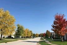 lovely neighborhood!