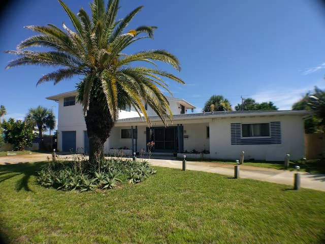 The front of the house with big palm and planters. Fruit trees throughout the yard... papaya anyone? Lemon? Grapefruit? Curved driveway and double-wide garage offers ample parking.