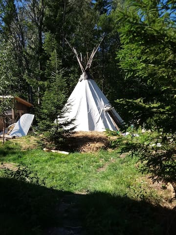 Woodland tipi for travellers - PLEASE read below!!