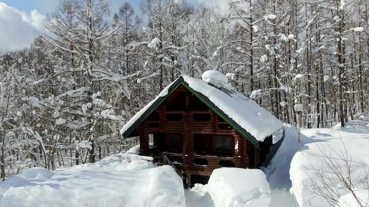 Self contained cottage with ensuite for 8 at the base of mountain - 100m from ski lifts. Ski to your door.