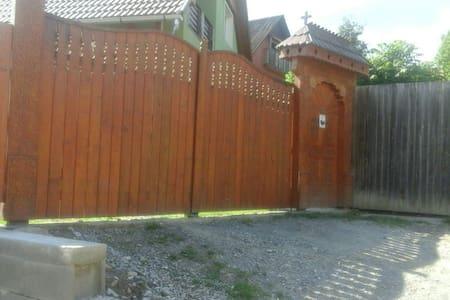 Village life - Satu Mare