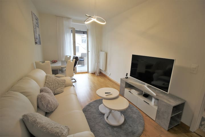 Furnished 3.5 Bedroom Apartment in Zurich City