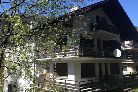 Luminoso appartamento con ampio giardino e garage - Aprica