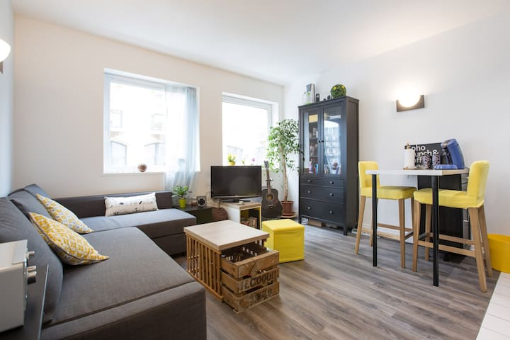 Beautiful and central apartment, Lille - Lille - Appartement