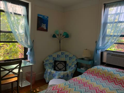 Cozy 1BR APT in the heart of Astoria