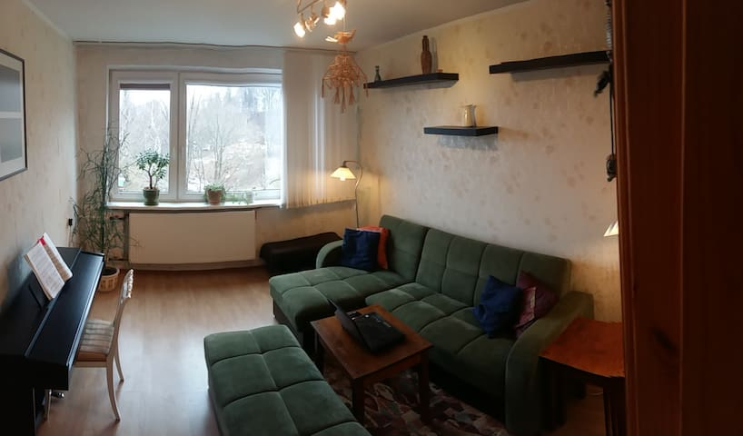 2 bedroom flat for 4 guests in local neigbourhood