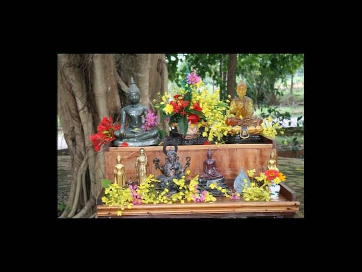 Bodhi Tree Bungalow House