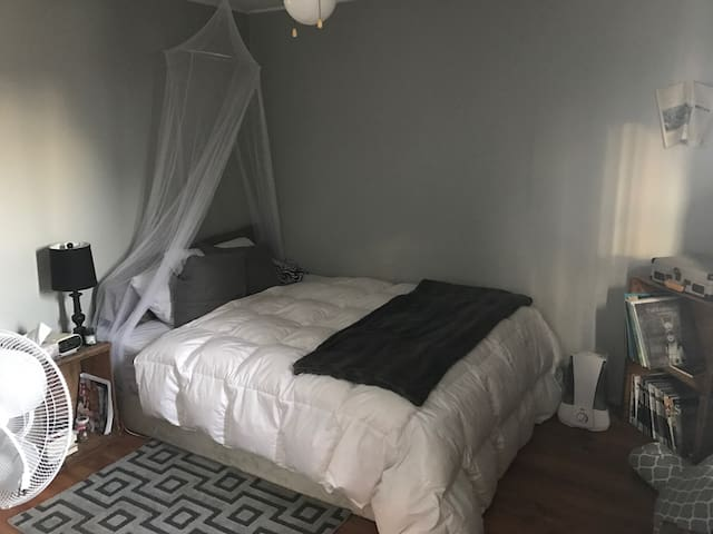 Apartment Close to Downtown Kingston - Kingston - Leilighet