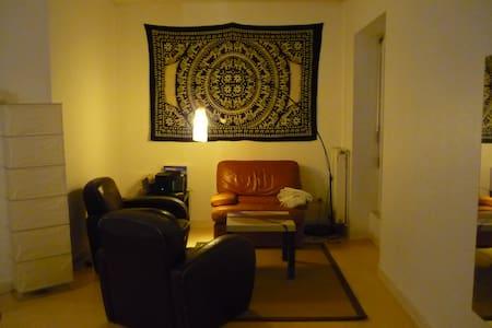 appartement 45m2 hyper centre - Saint-Étienne - Lejlighed