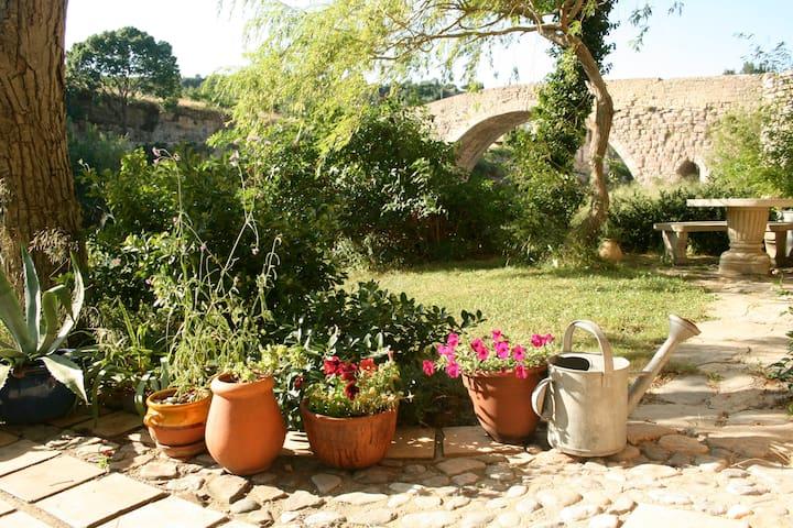 """The Riverside gites - Le """"Matisse"""" ( Market gite) - Lagrasse - Hus"""