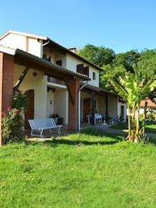 Villa très calme à 20 km de Toulouse - Vacquiers