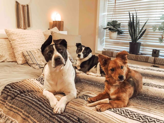 Cooper, Pepper & June