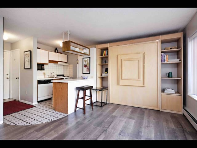 Living room/kitchen with the Murphy bed.
