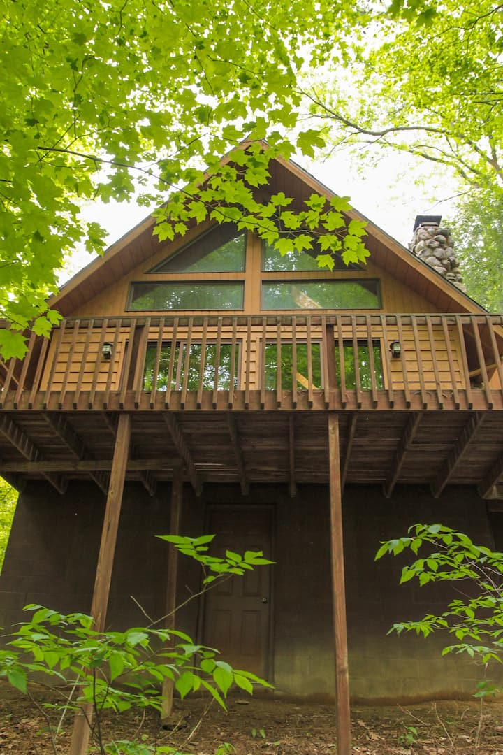Elk - Hocking Hills