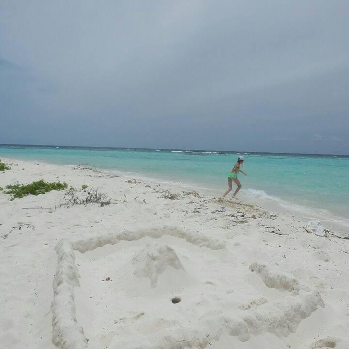 Free Corel Reef snowcal  Sany Batik