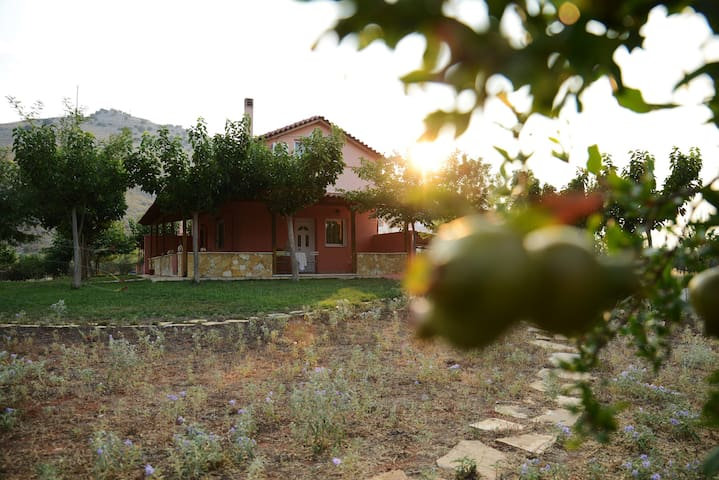 White & Blue Country House Nafplio - Nafplion - บ้าน