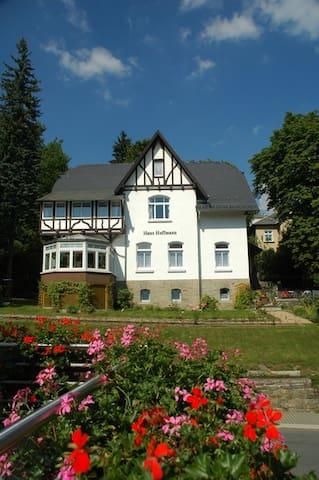 Helle Dachgeschosswohnung im Kurbad - Bad Elster - Apartment