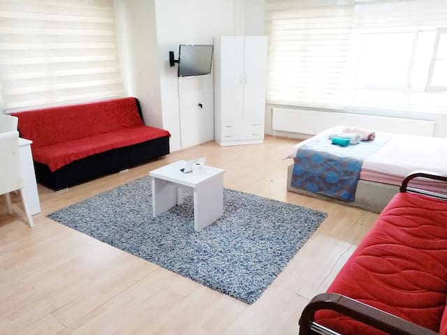 Convenient and clean apartment in the center