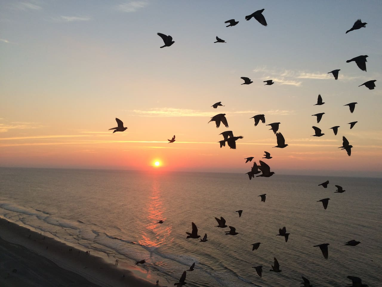 Take a quarter mile walk to Hammonesset state park and watch the sunrise or sunset. Birds not included.