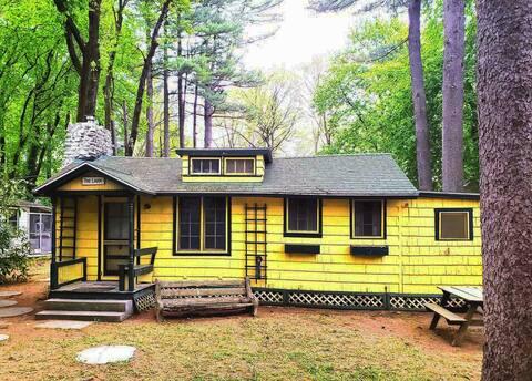 Vintage Retro Cabin