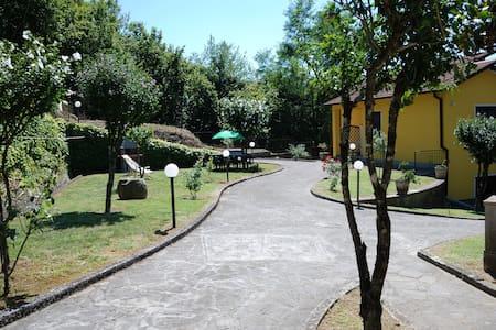 """Casa vacanze """"IL VIGNETO""""..20 km from Cinque Terre - Sesta Godano"""