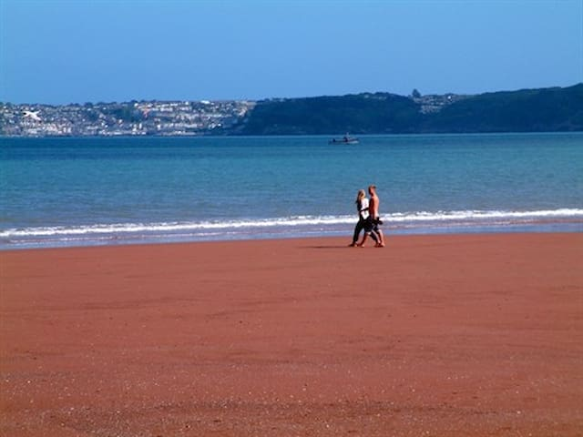 The Beach Retreat - stunning family holiday home - Paignton - House