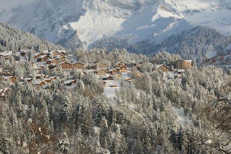 Le top 20 des Chalets à louer à Villars-sur-Ollon - Airbnb, Vaud ...