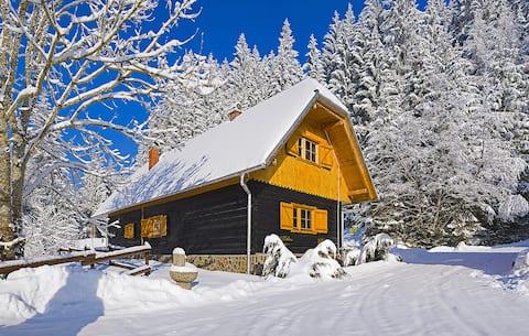 Rogla Dandi Pohorje House 1 - Authentic house