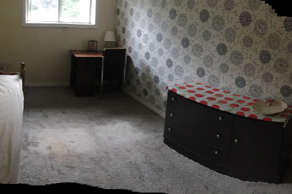 a single room in Bi-level house half-basement