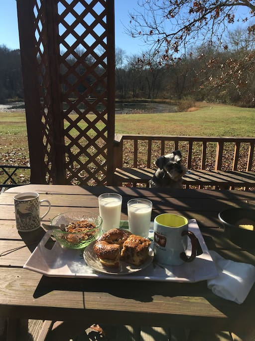 Enjoy breakfast overlooking the pond and sunbathing.