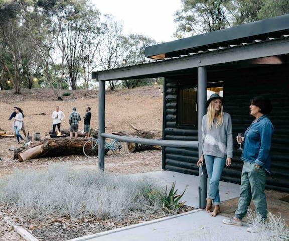 Log cabin set amongst the trees
