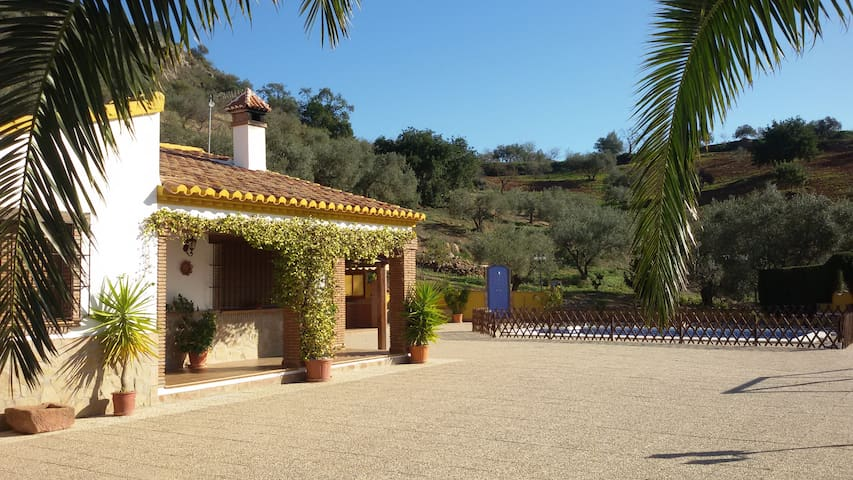 House in the mountains, very close to Málaga. - Almogía - House