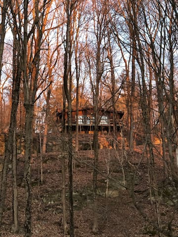 Private Cabin on 130 acres with Waterfall & Creek