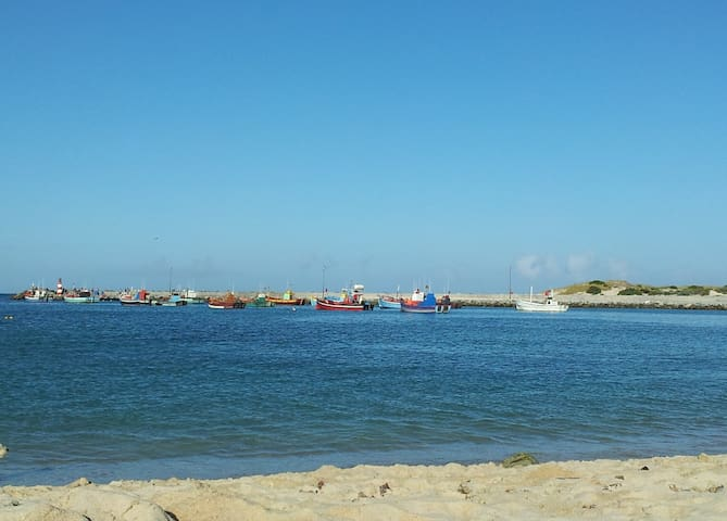 Our local harbour in Struisbaai. The home of Parrie the Stingray