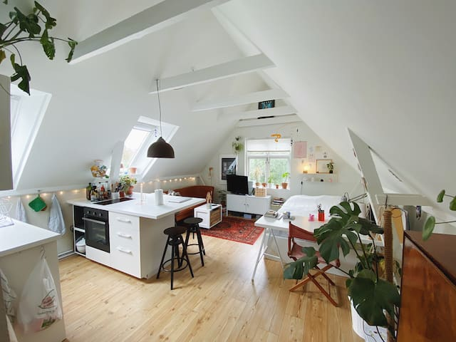 Cozy studio apartment in the heart of Aarhus