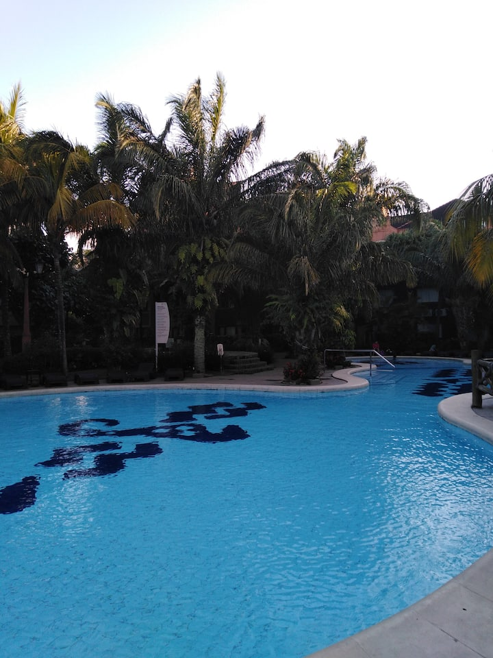 A Tropical Paradise - An Oasis- A Dream Come True