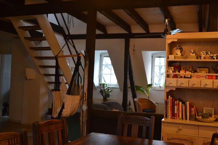 Altstadt-Wohnung mit Dachterasse und Domblick