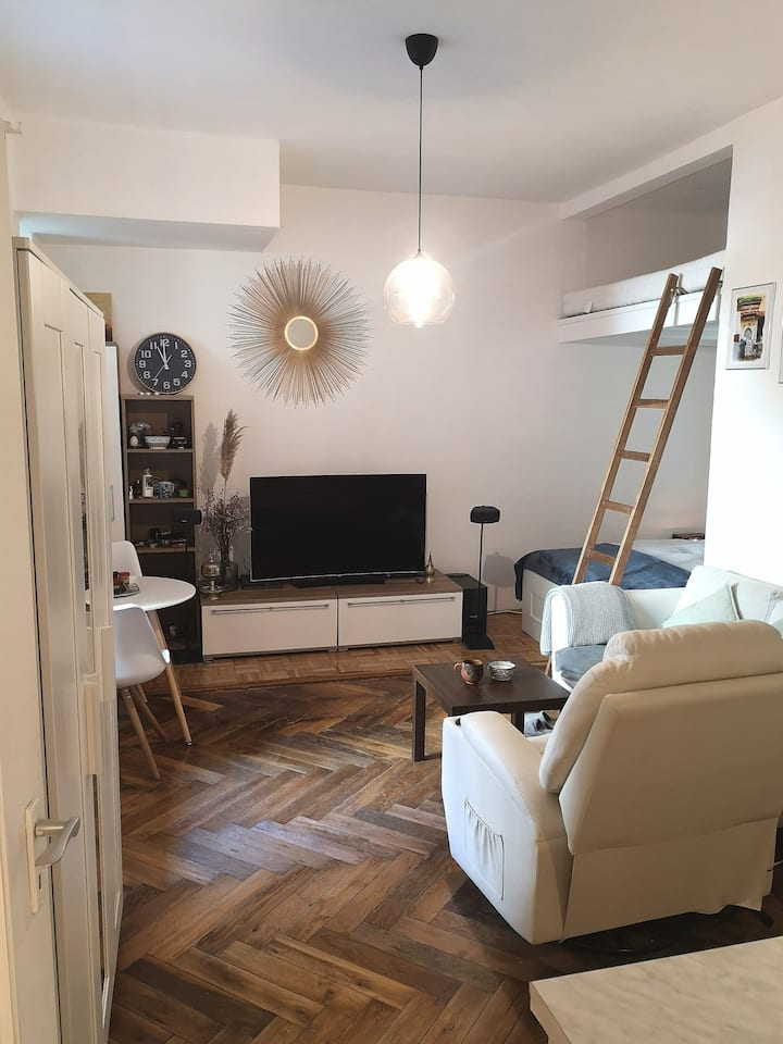 Entire flat with garden-Close to city & Isar river