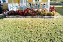 View of the front garden bed from the patio