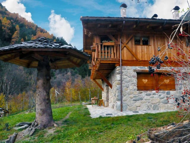Chalet in Livo ID 236