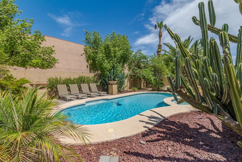 One of our nicest pools and most private yards.